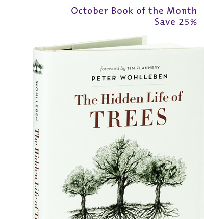 October Book of the Month: Hidden Life Of Trees by Peter Wohlleben